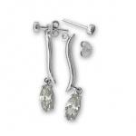 Zareen - Сребърни обеци с Циркони 122594-Сребърни бижута