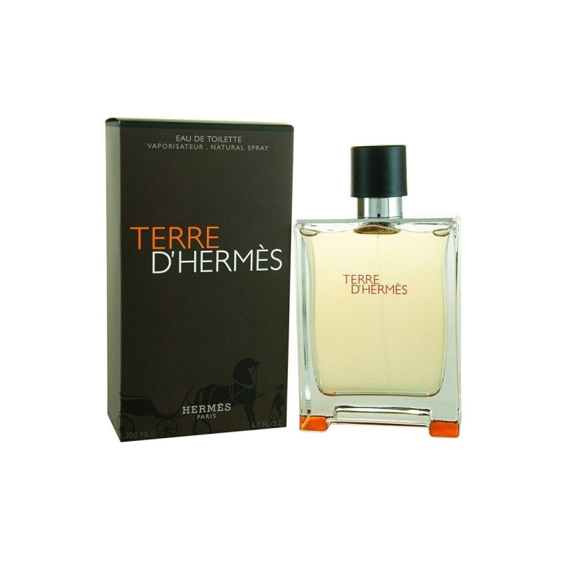 Hermes Terre D`Hermes  Тоалетна вода за мъже EDT 200 мл-Парфюми